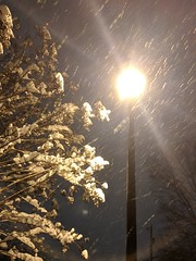 Snowflakes and streetlight, part 1