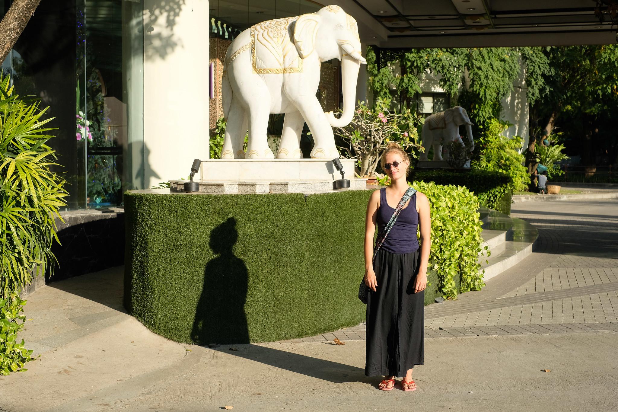 SMQ_Elefant
