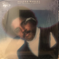 DEXTER WANSEL:WHAT THE WORLD IS COMING TO(JACKET A)