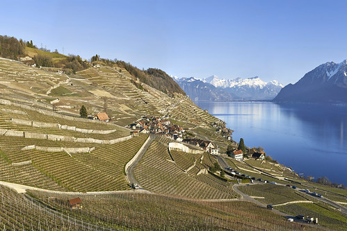 The tiny village of Epesses in Lavaux, Switzerland