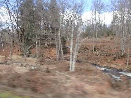 Le Voyage à Limoges (et retour)