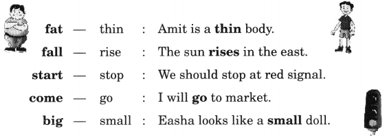NCERT Solutions for Class 2 English Chapter 8 Rain 31