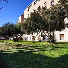 #Buongiorno Sapienza con una foto dell'Edificio di Antropologia di @giovap94 ・・・ #Repost: «:school::herb: #Sapienza #sapienzauniversitàdiroma #cittàuniversitaria #università #university #campus #garden #meadow #grass #trees #leaves #sky #sun #morning #sun