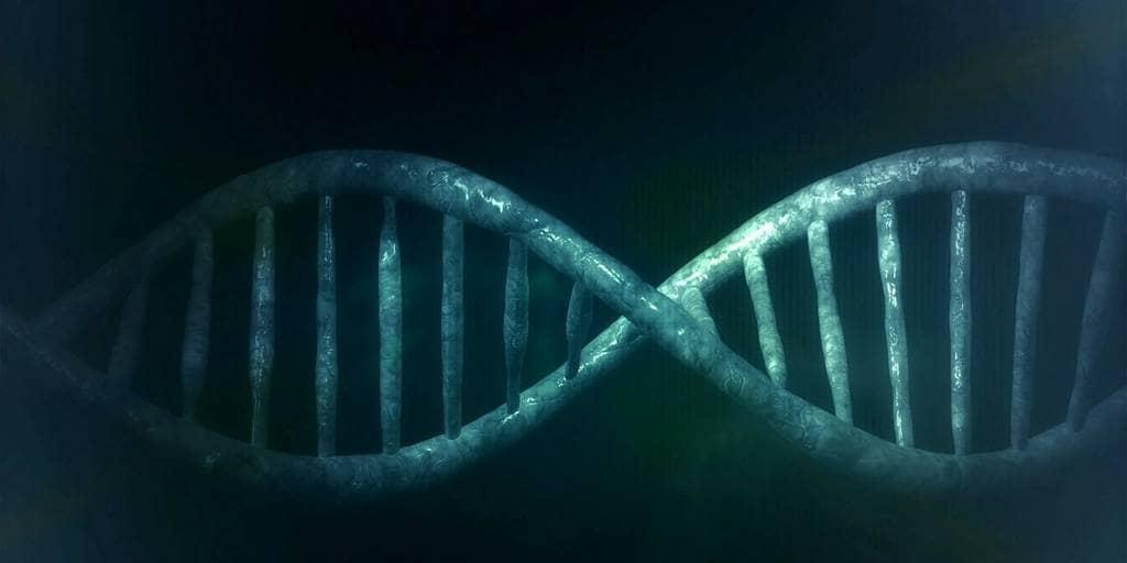 Les «gènes sauteurs» provoquent de nombreux cancers