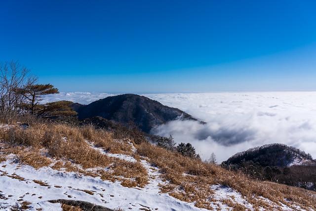 雁ヶ腹摺山の背後にも雲海・・・奥多摩の山々は見えない