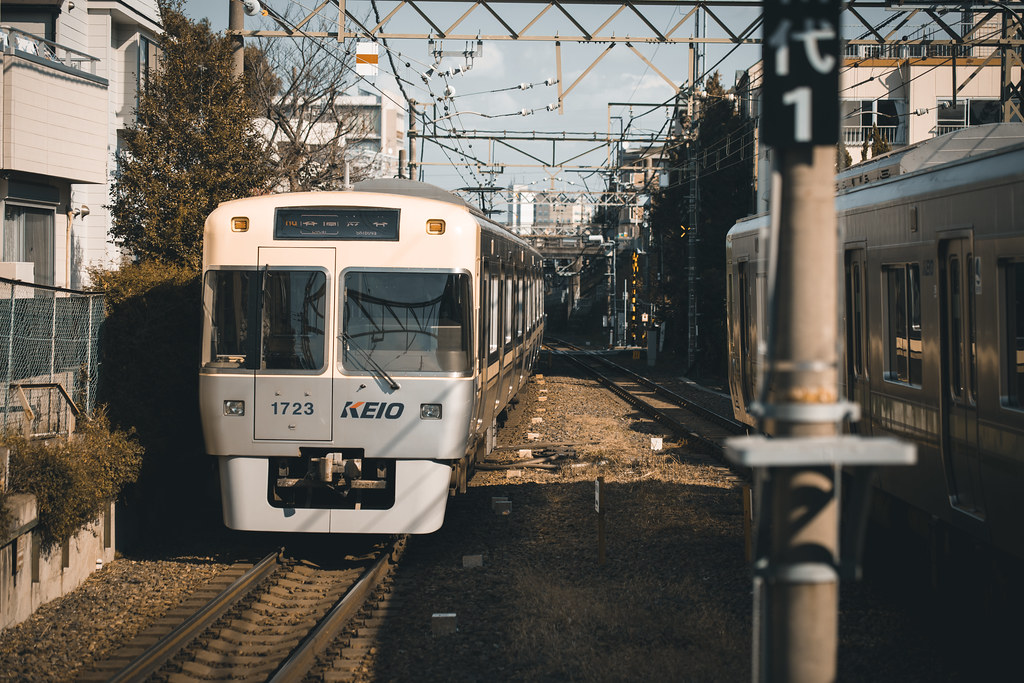 4X3A2598.jpg