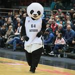 avtodor_zg_ubl_vtb_ (19)