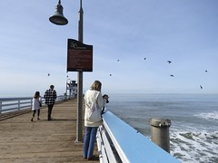 """Anonymous"" young woman checking her camera on the San Clemente Pier."