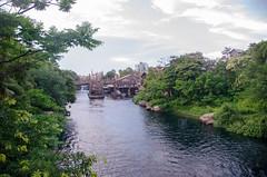 Photo 2 of 20 in the Day 14 - Tokyo Disneyland and Tokyo DisneySea album
