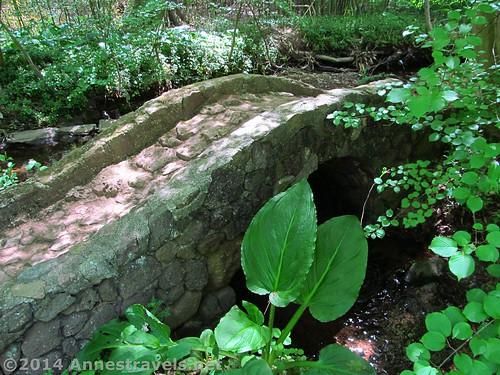 Mini Stone Bridge, Willowwood Arboretum, Morris County, New Jersey