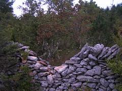 20080914 36743 1015 Jakobus Gebüsch Steinmauer Bäume - Photo of Espédaillac