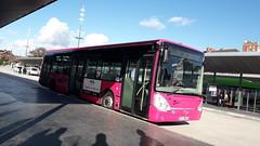 Irisbus Citelis 12 n°308