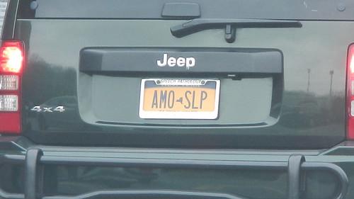NY - AMO-SLP