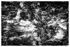 Les Errements de l'âme / The wanderings of the soul #8