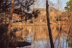 Arboretum Lake Hughes 4