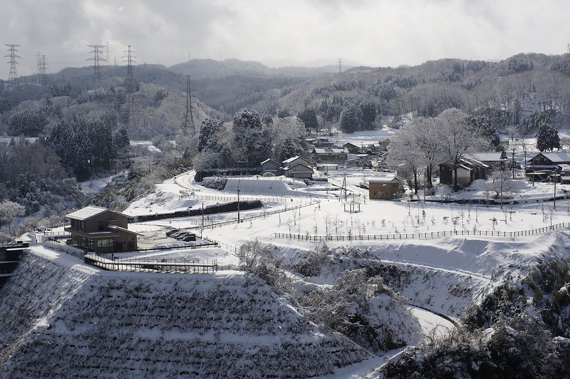 Snow Scape