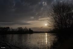 Sunset in gray