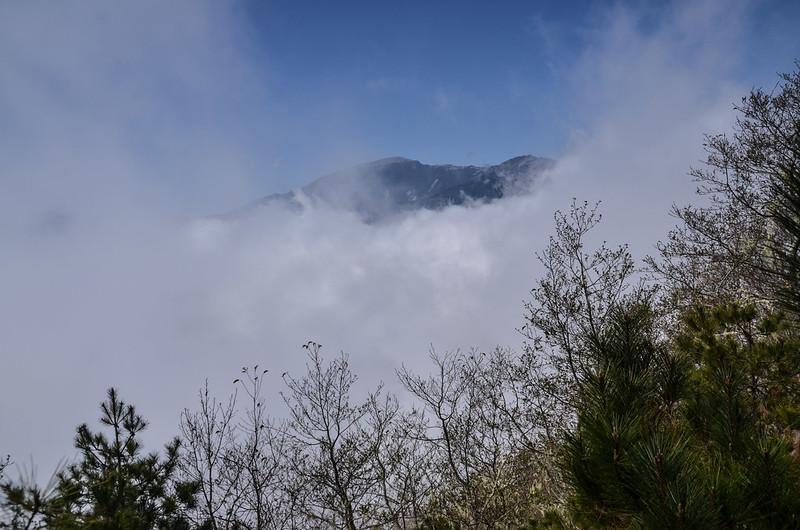 戒茂斯山登山途中西眺關山大斷崖 (6)