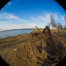 2019-02-15 Fisheye Walk-11.jpg