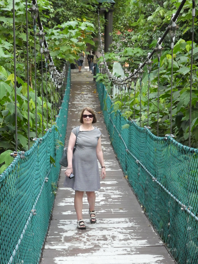 Walking along the canopy walkway at the KL Eco Forest Park