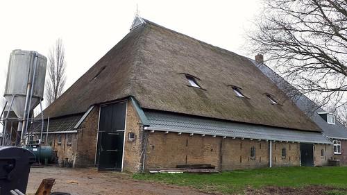 Historica farmhouse, Kalverboer