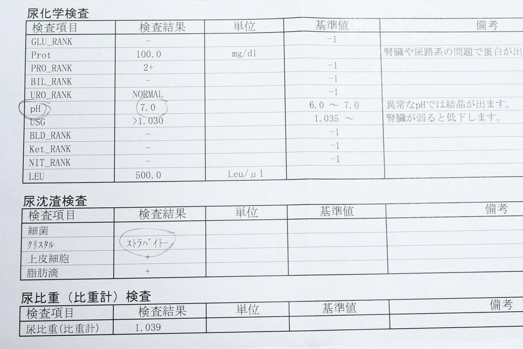 検査結果(1月9日)