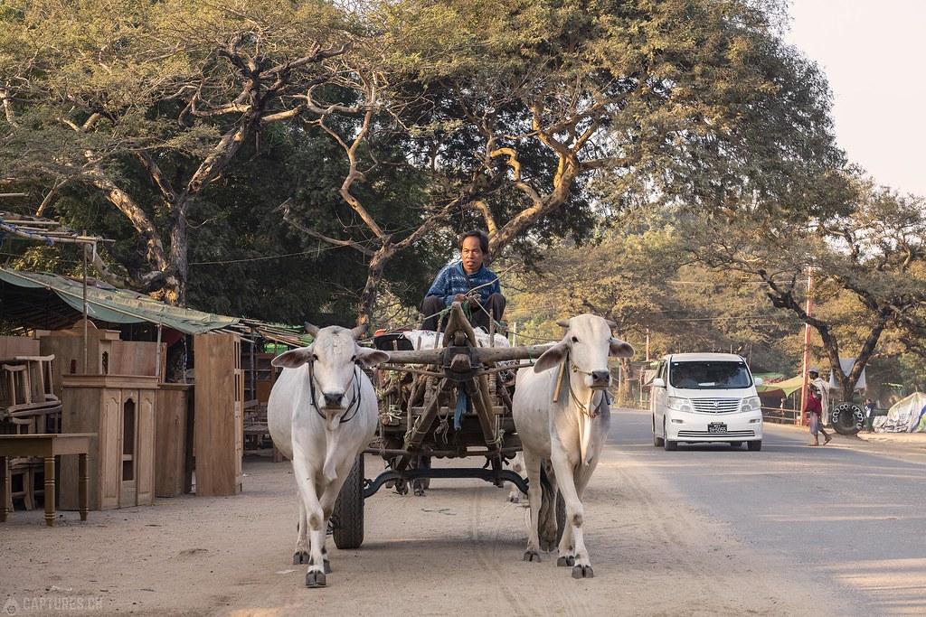 Old vs new - Bagan