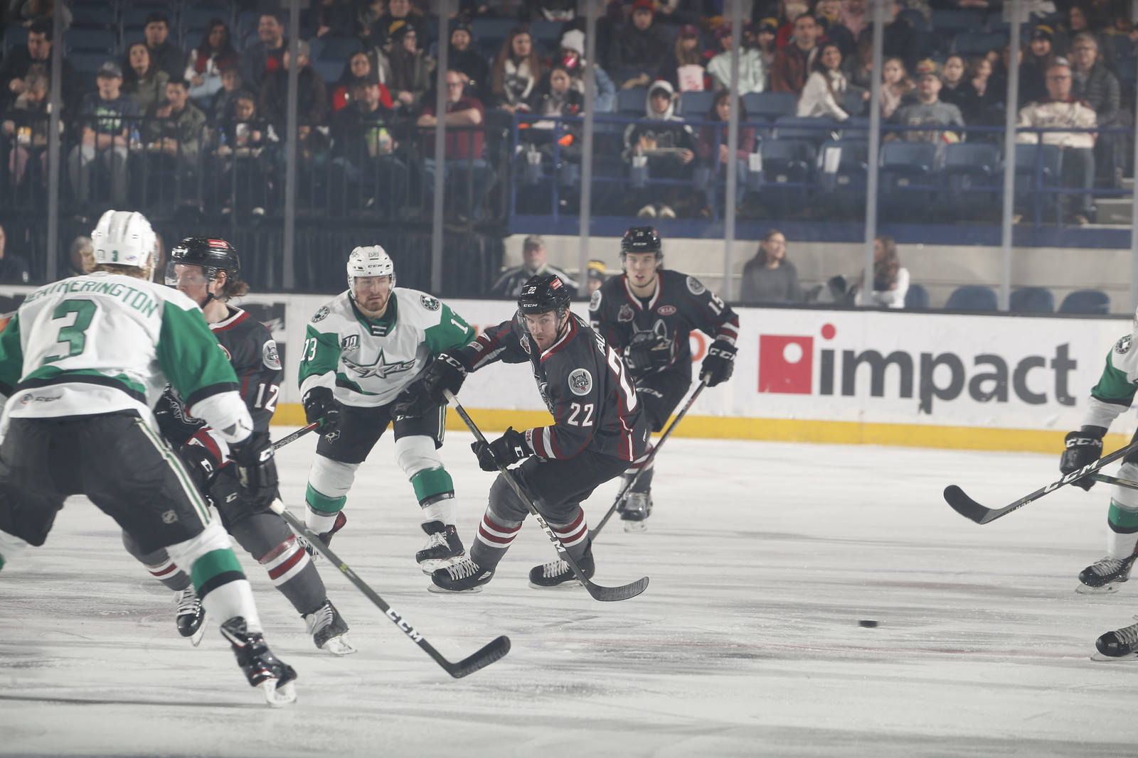 Feb. 24, 2019 vs. Texas Stars