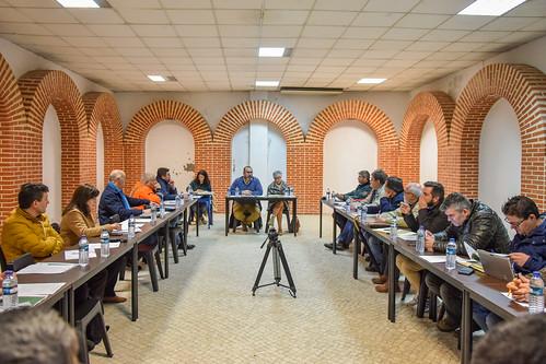 Conselho Municipal de Segurança Chamusca (5)