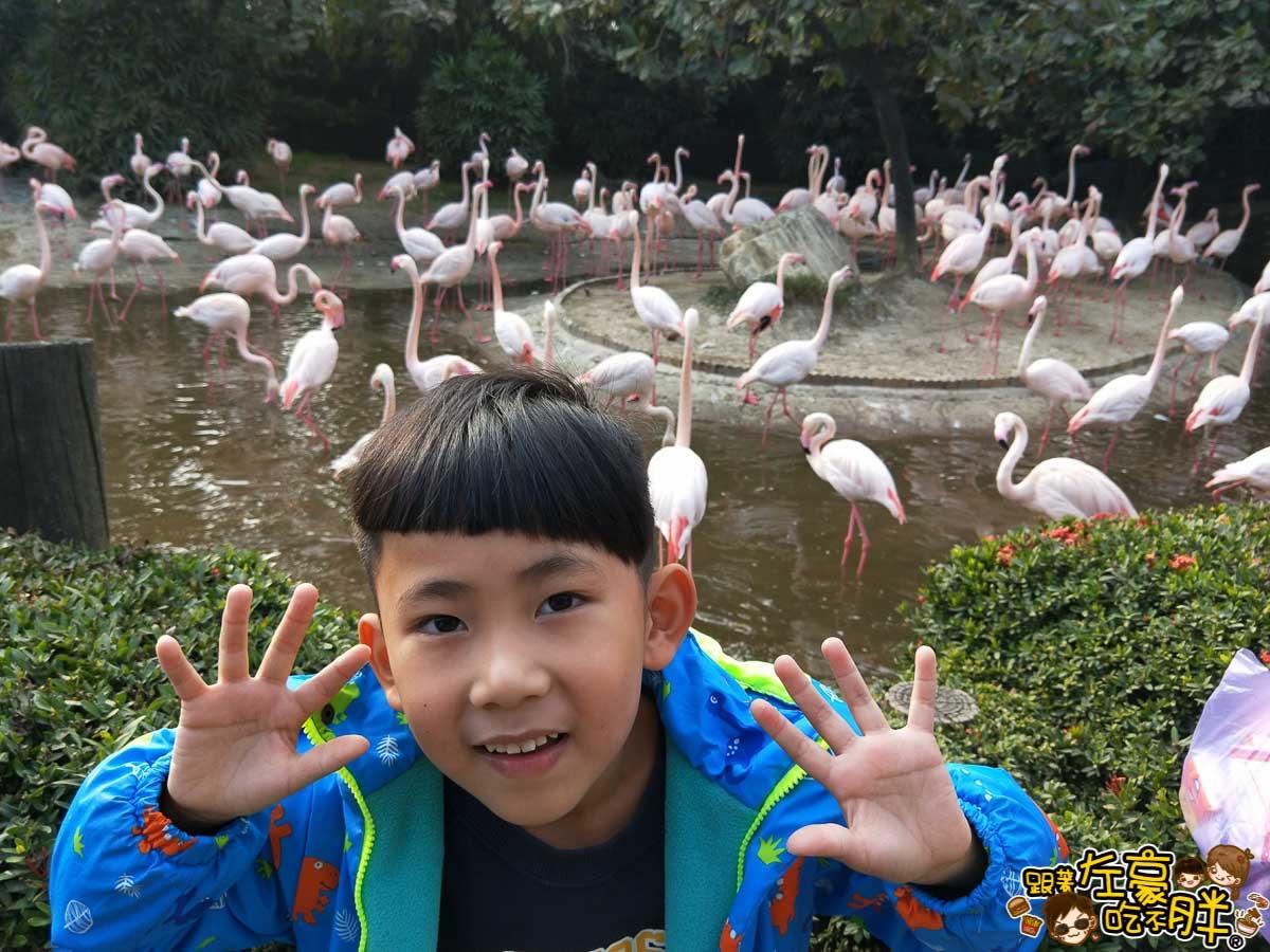 台南頑皮世界-139