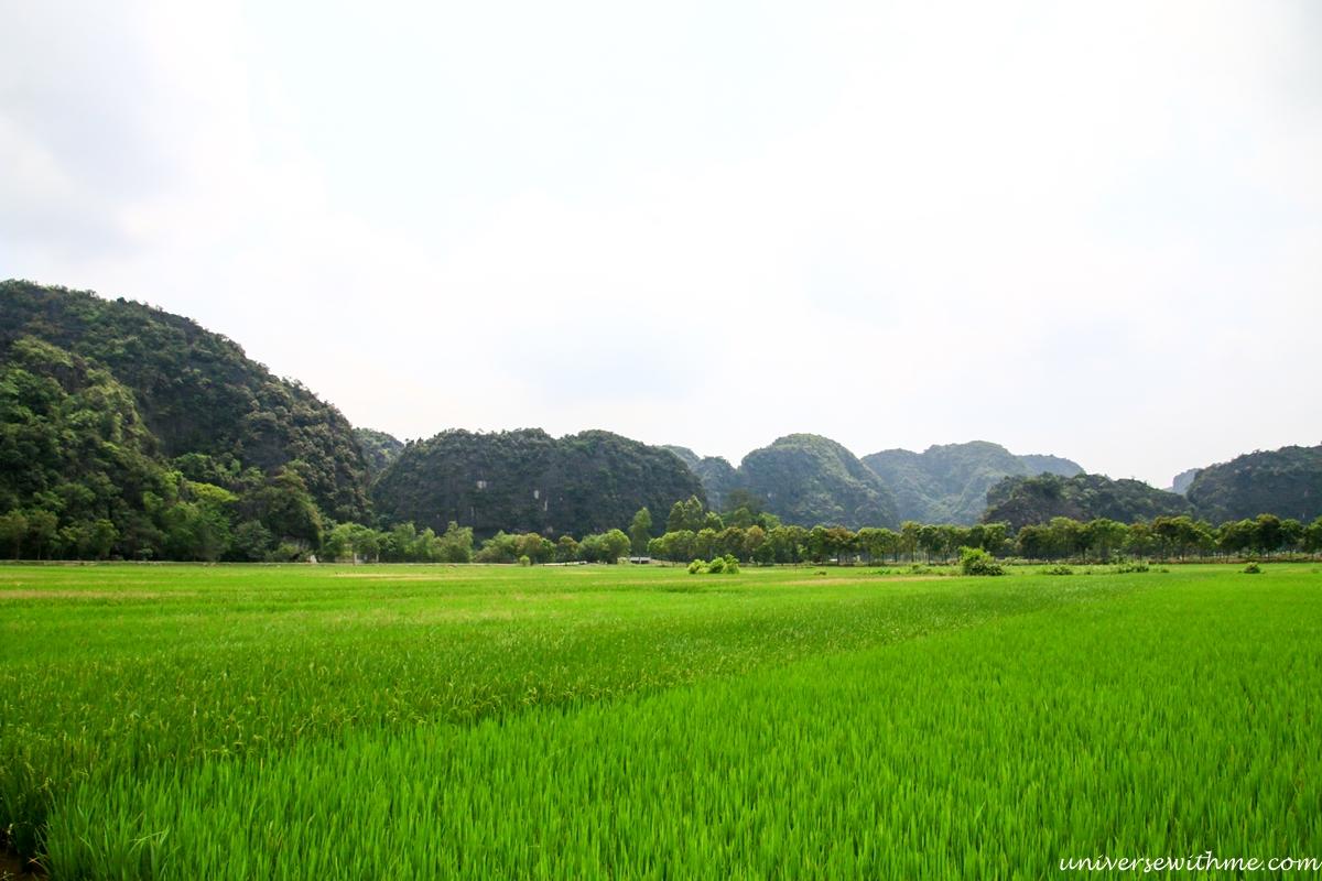 Vietnam_031