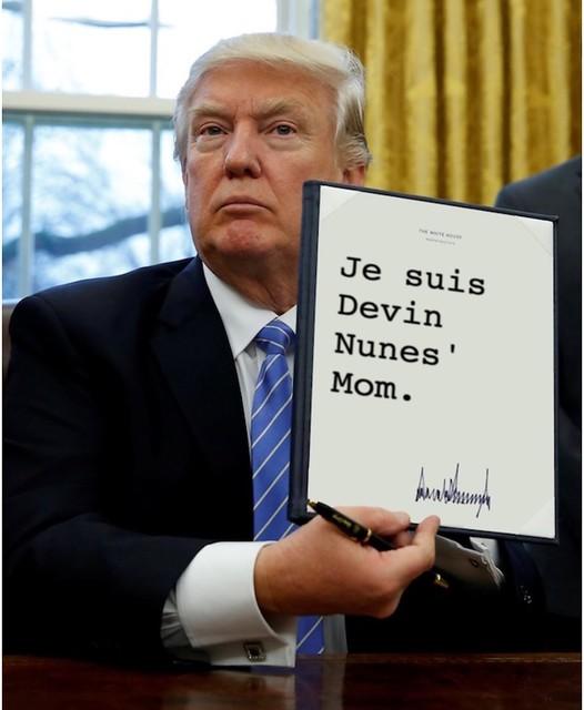 Trump_devinnunesmom