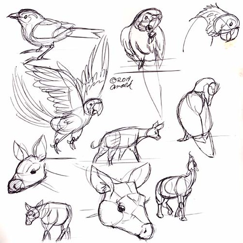 3.15.19 - Animal Kingdom Sketches