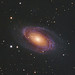 Messier 81 LRGB