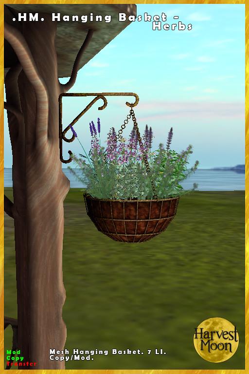 Harvest Moon – Hanging Basket – Herbs