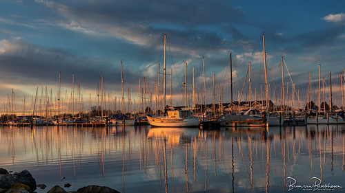Golden hour Herkingen Marina