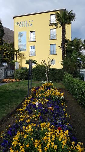 Locarno Orselina-Hotel Stella 019