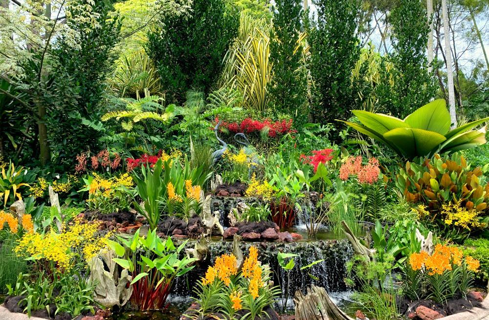 Trekking in Singapore: Botanical Gardens