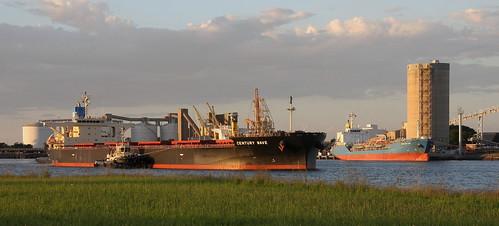 BULK CARRIER 'CENTURY WAVE' DEPARTING KOORAGANG ISLAND COAL BERTHS - LPG TANKER 'WINCANTON' LOADING.