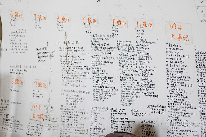 每一池的水色、飼料等管理狀況都被詳實記錄於白色木板上。