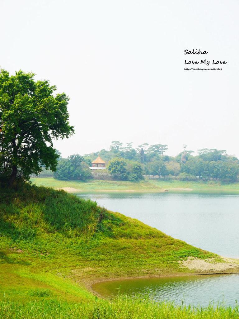 嘉義市區一日遊景點行程推薦蘭潭水庫 (8)