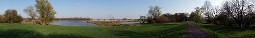 Panorama of the river Elbe 1