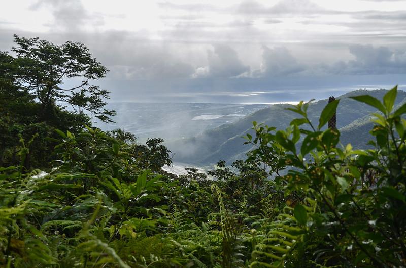 戶張山產道(H 730 m)東南俯瞰東海岸