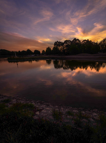Evening At Henley Lake