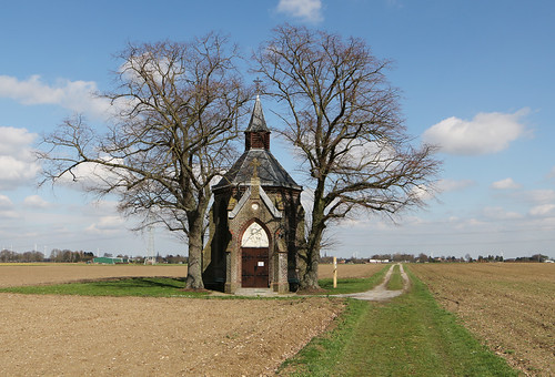 church between the trees