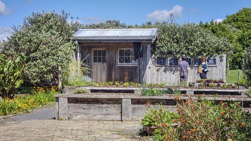 20181122_154757 At the Auckland Botanical Garden, New Zealand