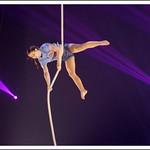 Corde verticale - Ellie Rossi