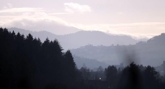 Wildtal landscape II
