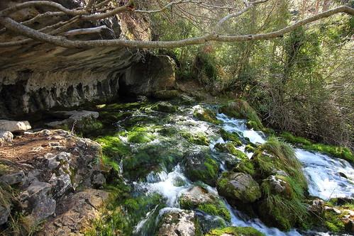 Nacimiento del Rio Cuervo 3