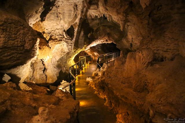 Ruakuri Caves